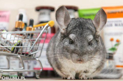 Naturalne kosmetyki nie testowane na zwierzętach - szynszyle - chillbill