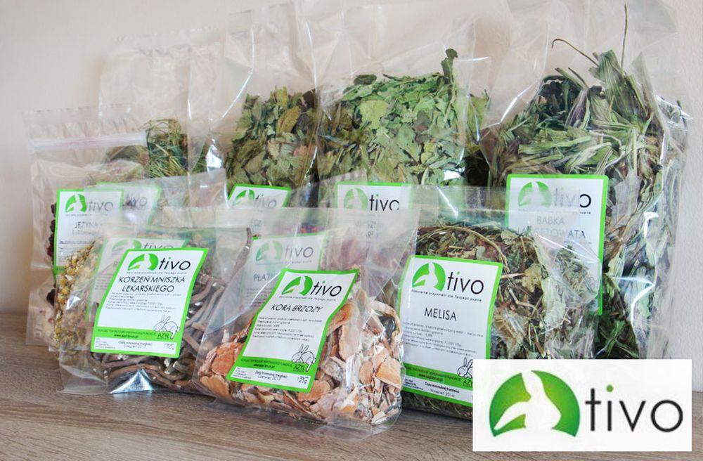 Recenzja produktów firmy TIVO - szynszyle - chillbill