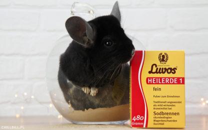 Recenzja ziemi leczniczej marki Luvos