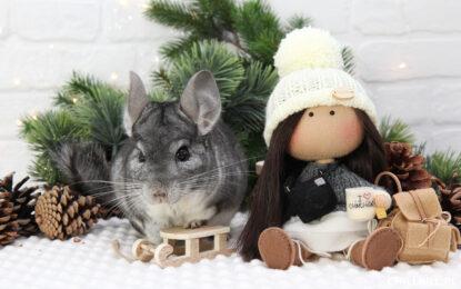 Szynszylowy Blogmas - Misja Świąteczne Dekoracje