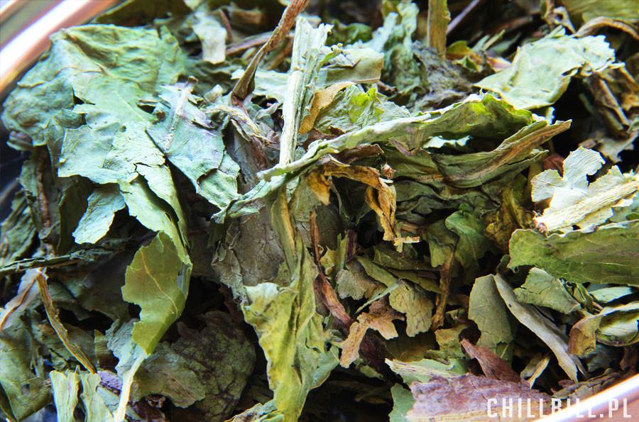suszone zioła dla szynszyli od tivo