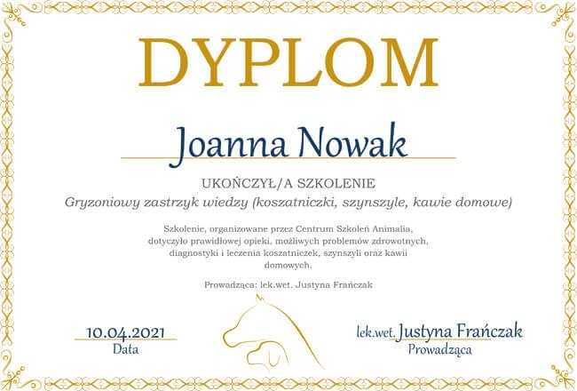 certyfikat szkolenia Joanna Nowak szynszyle