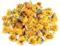 suszone kwiaty dla szynszyli